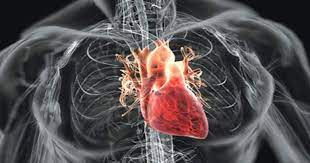 The Best Destination for Heart Surgery and Treatment