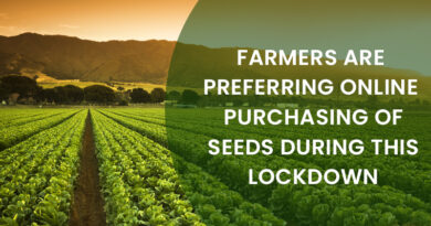 Online Purchasing Of Seeds