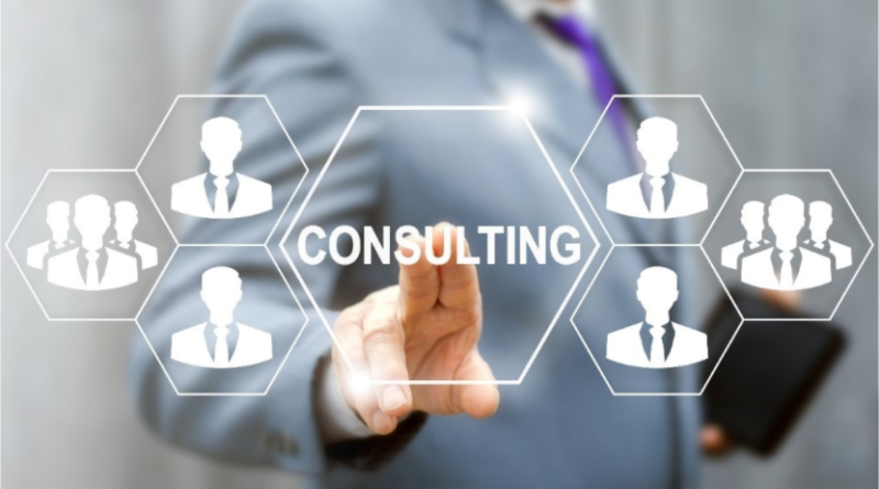 How Business Growth Consultant Help a Business?